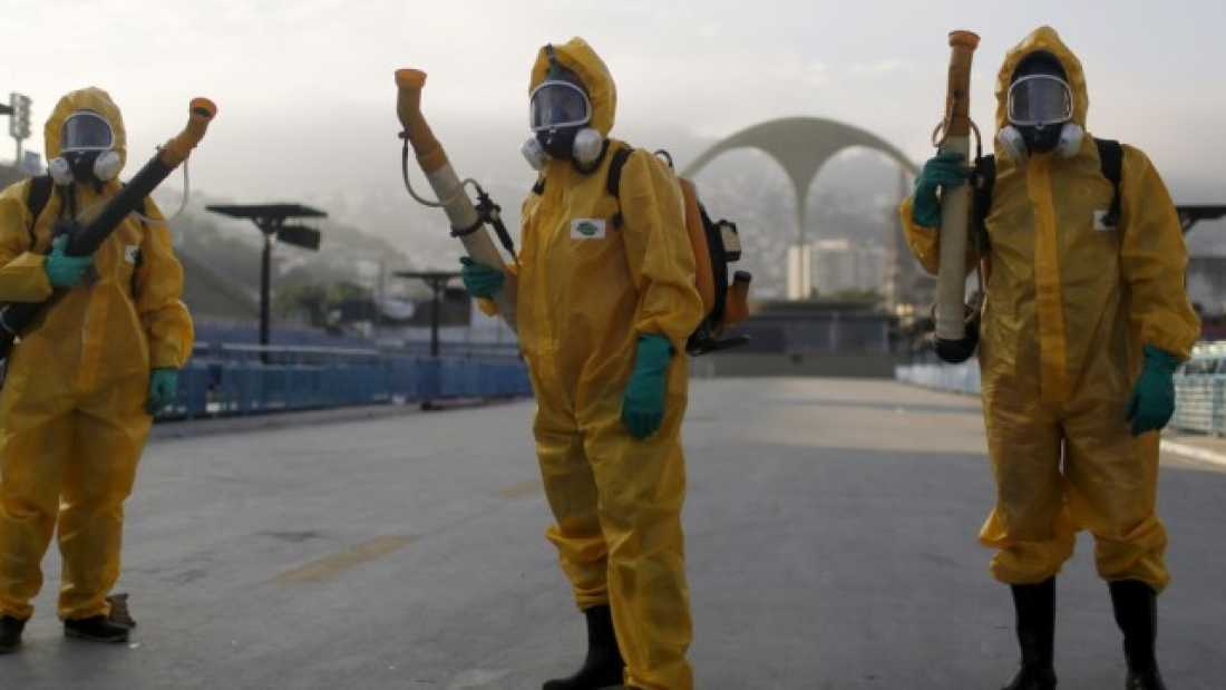 972 Where Did Zika Virus Come From And Why Is It A Problem In Brazil?