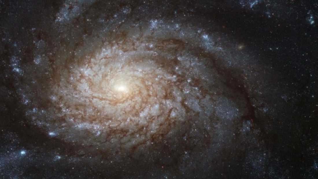 992 Is Our Milky Way Galaxy A Zombie, Already Dead And We Don't Know It?
