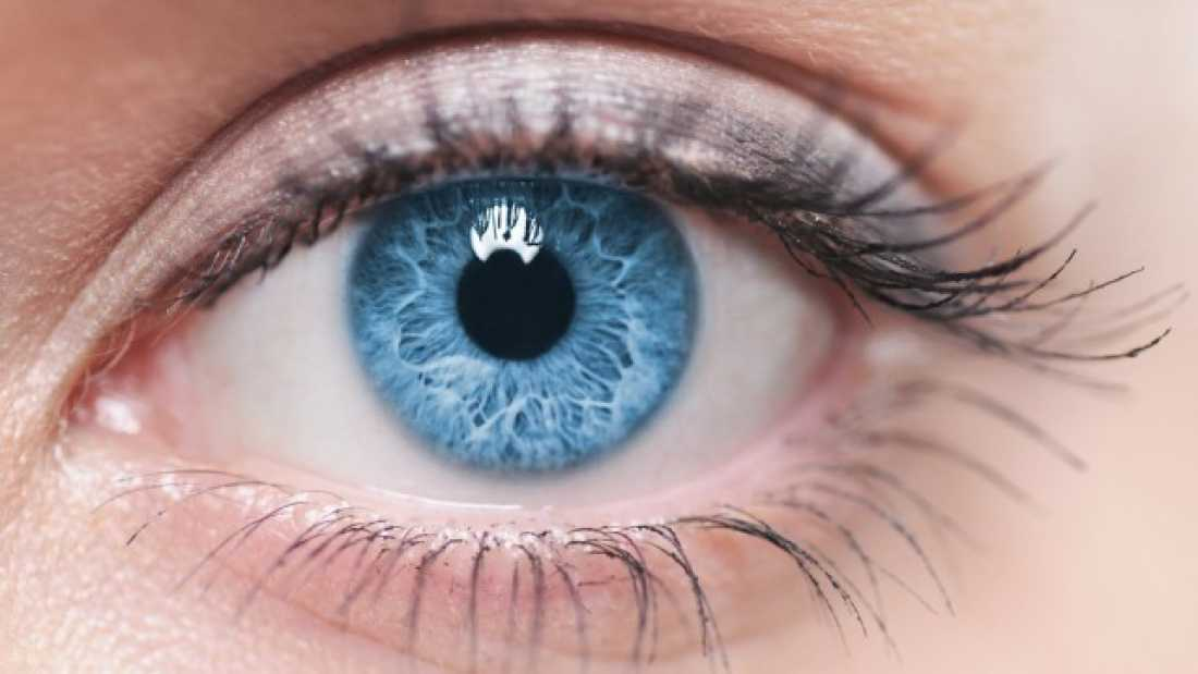 257 All Blue-Eyed People Have This One Thing In Common