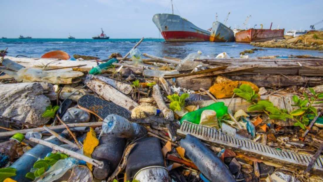776 Plastic In Oceans Will Outweigh Fish By 2050