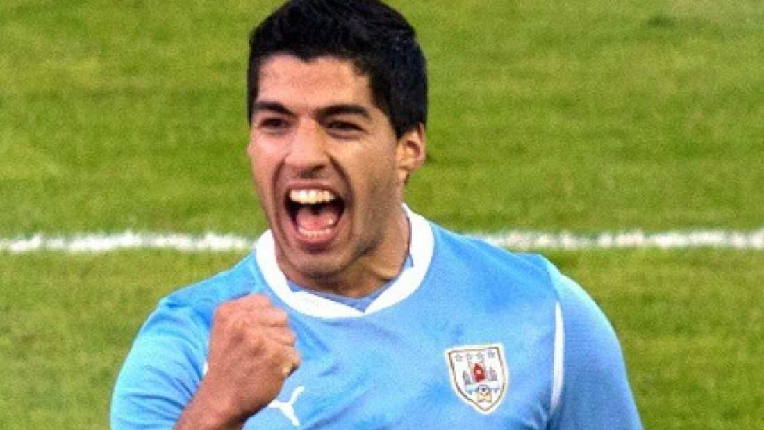 1361 You Have A Higher Chance Of Being Bitten By Uruguay's Luis Suarez Than By A Shark