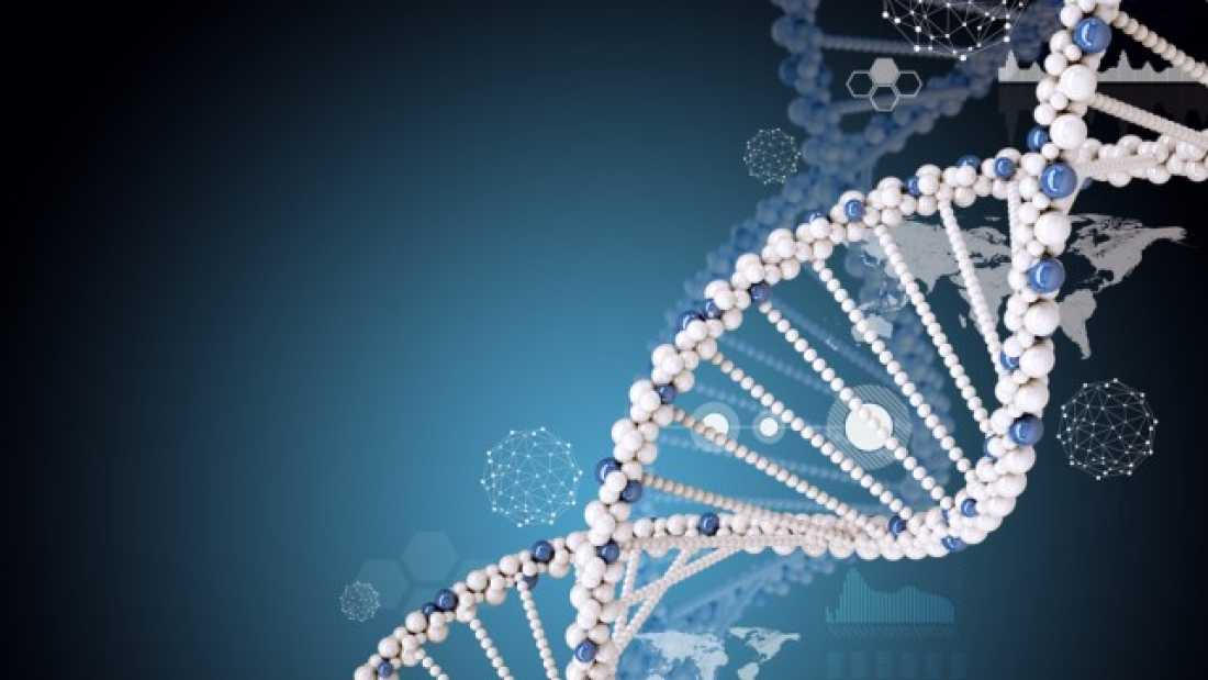 1060 School Accused Of 'Genetic Discrimination' After Excluding Student Because Of His DNA