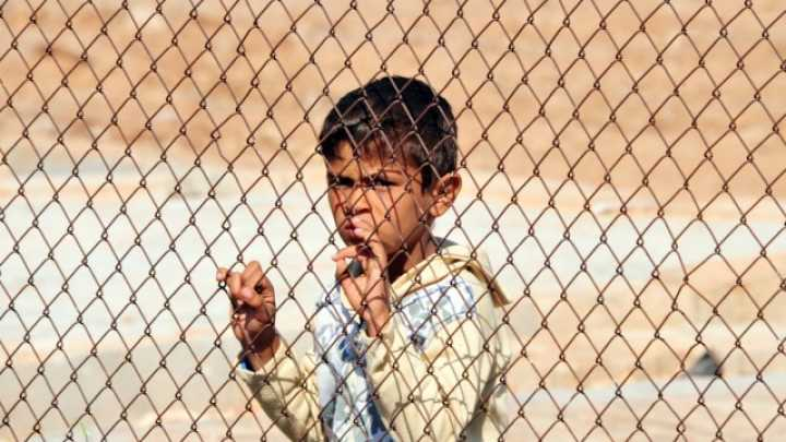 Image result for Refugees at three times higher risk of schizophrenia and other psychoses