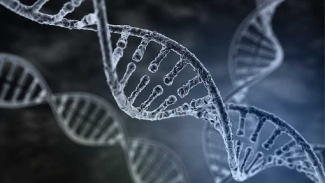 974 Good Health And High Intelligence Shown To Be Linked To Same Genes