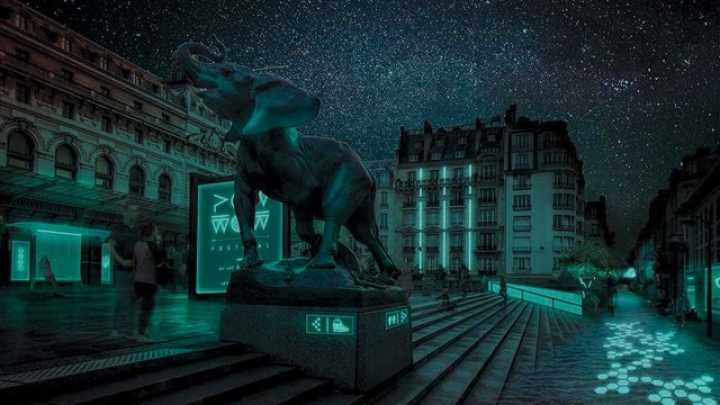 Bioluminescent Bacteria Could Light Up The Streets Of Paris ...