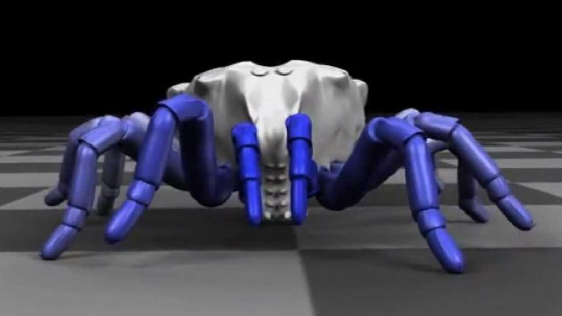 1465 Ancient Spider-Like Predator Resurrected