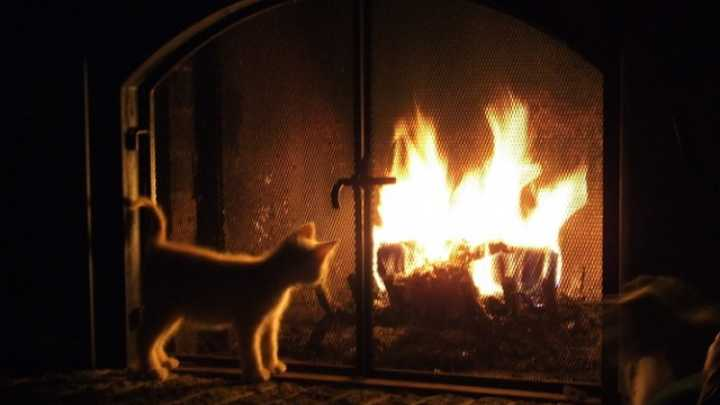 Five Ways To Keep Your Home Warm This Winter Iflscience