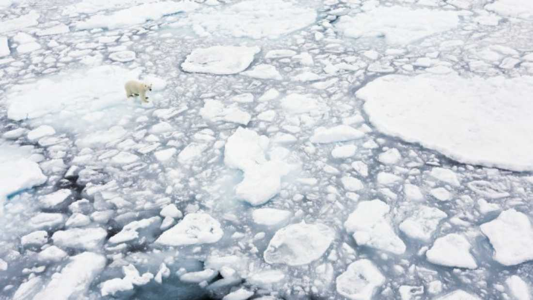1184 After Hottest Year On Record, Ocean Warming Is Now 'Unstoppable'