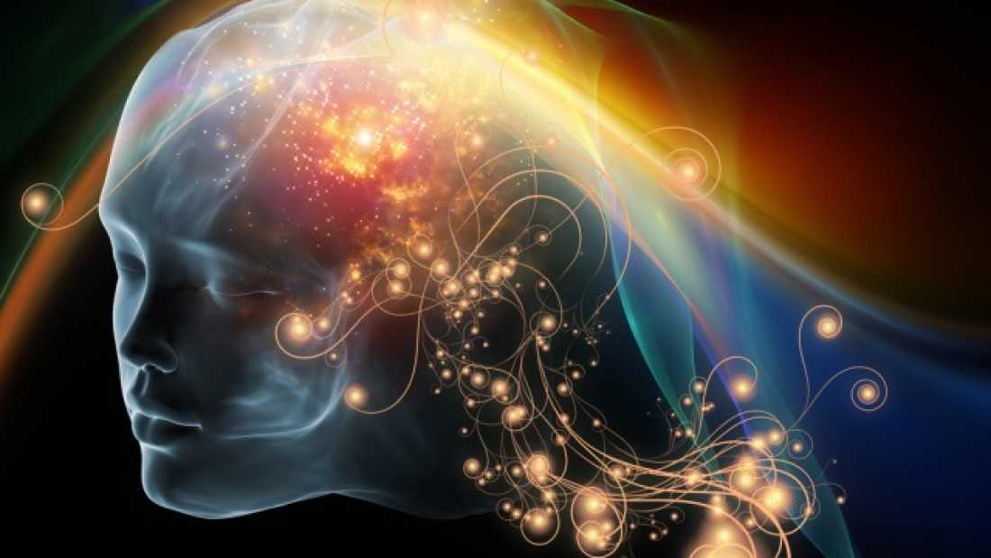947 Neuronal Basis Of Consciousness Explored In New Study