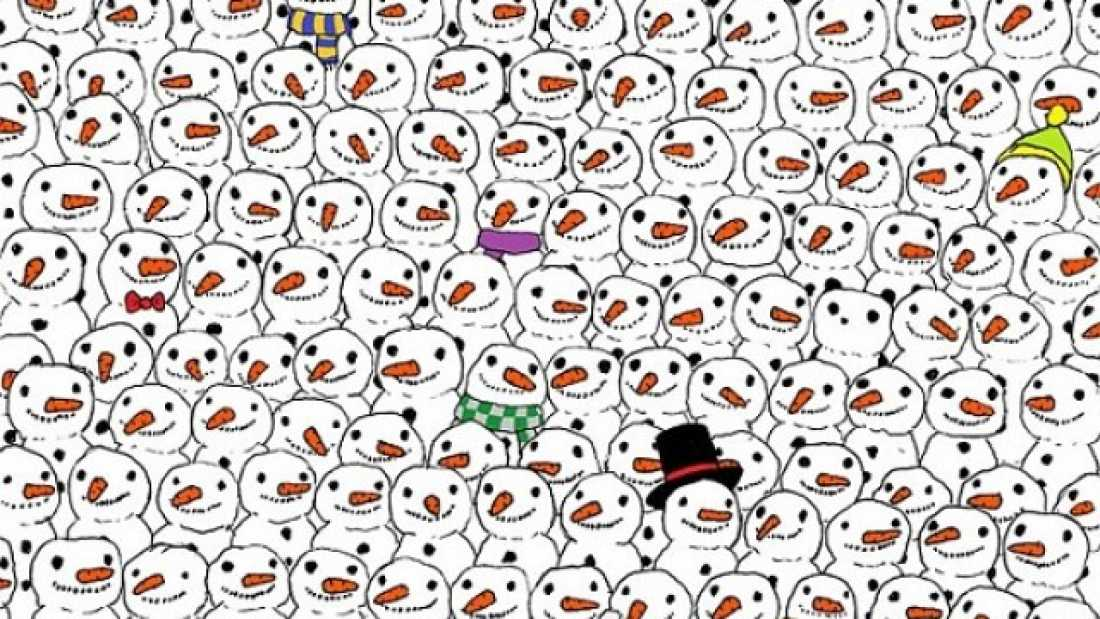 303 Why Is It So Hard To Find This Damn Panda?