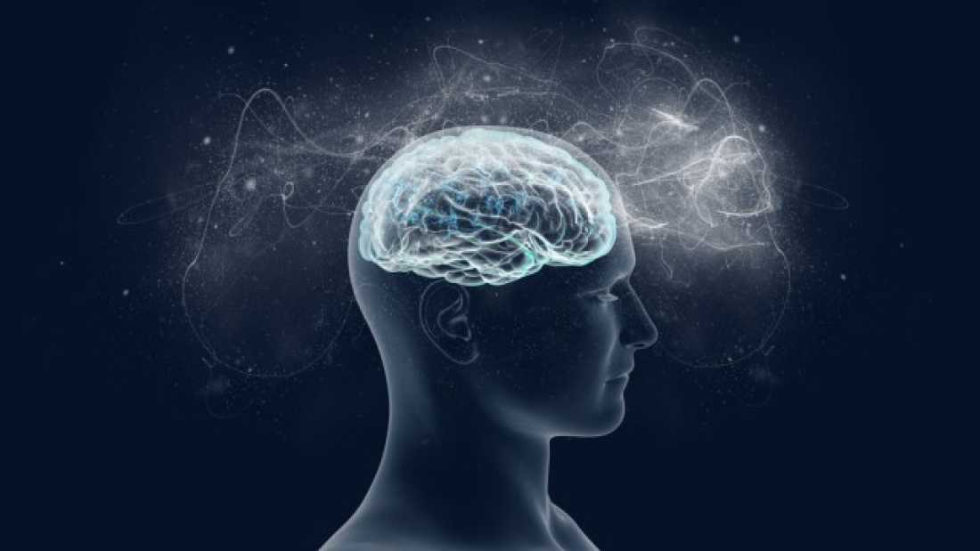 798 The Brain's Memory Capacity May Be Ten Times Greater Than We Thought