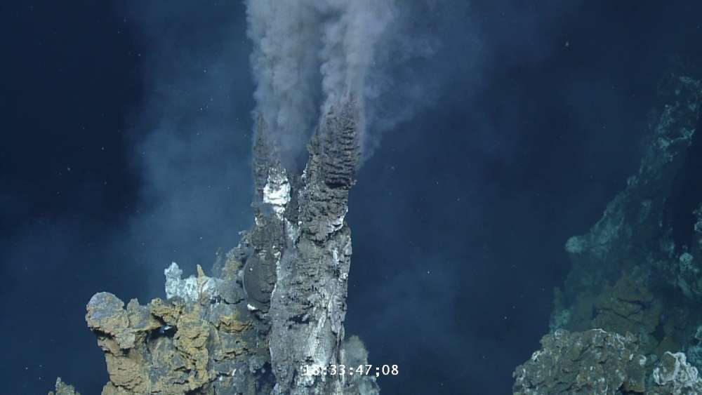 Deep-sea fish hijack hydrothermal vents to incubate their young