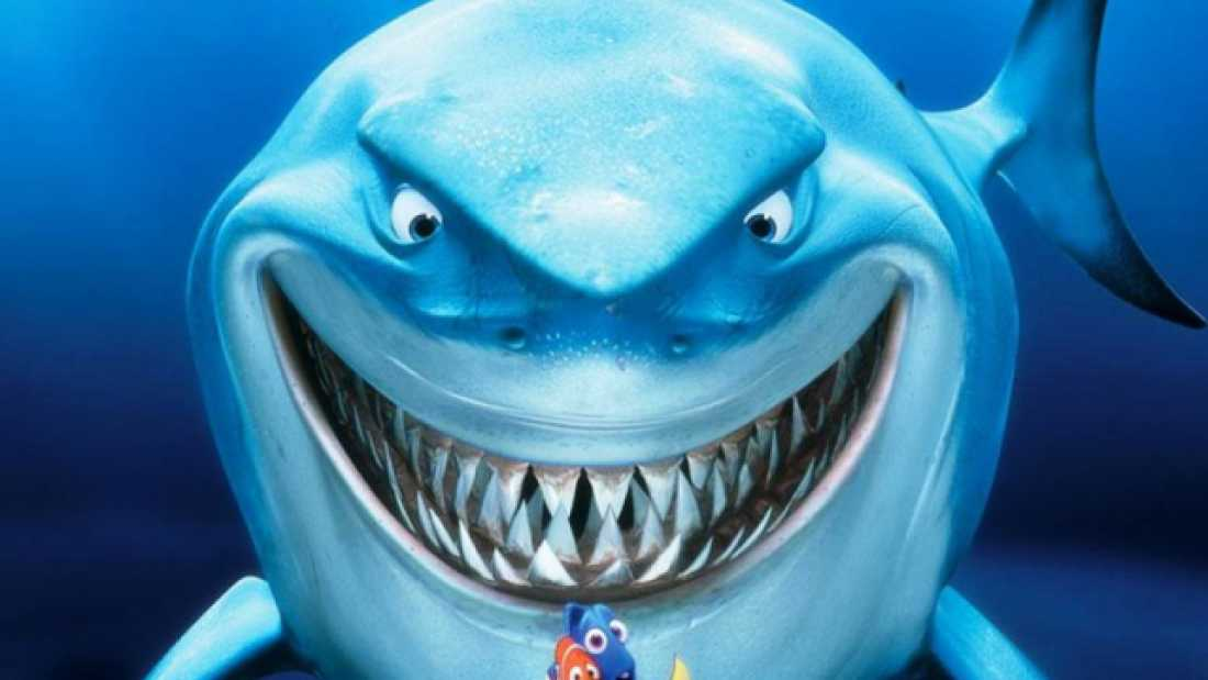 632 Photographer Captures 'Smiling' Shark That Looks Just Like Bruce