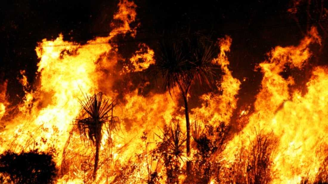 807 Two-Thirds Of Dangerous Climate Phenomena Linked To Human Activity