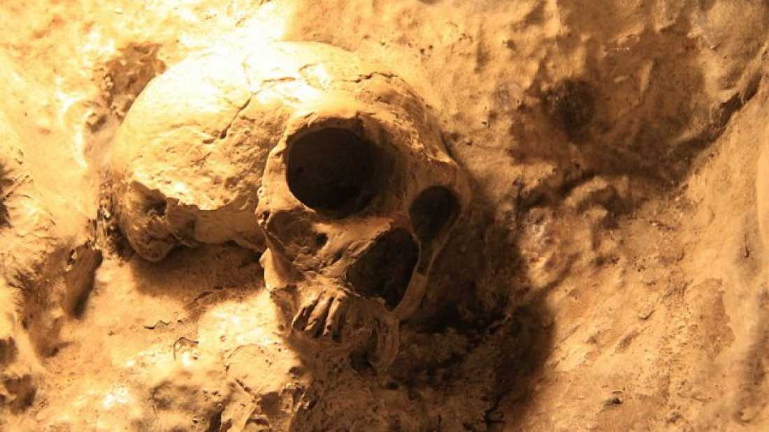 198 Neanderthals confirmed to have buried their dead