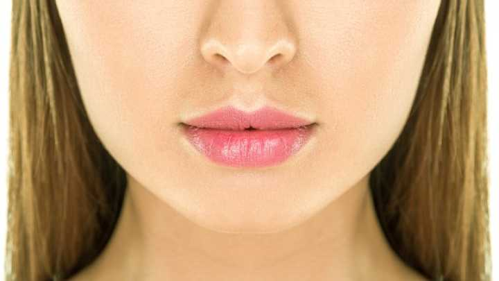 What is the groove between the nose and upper lip?