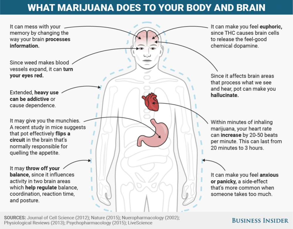 what do drugs do to your mind