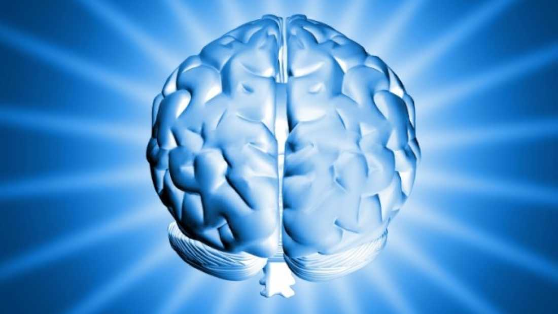 660 Neurobiological Origin of Attention Deficit Disorder Discovered