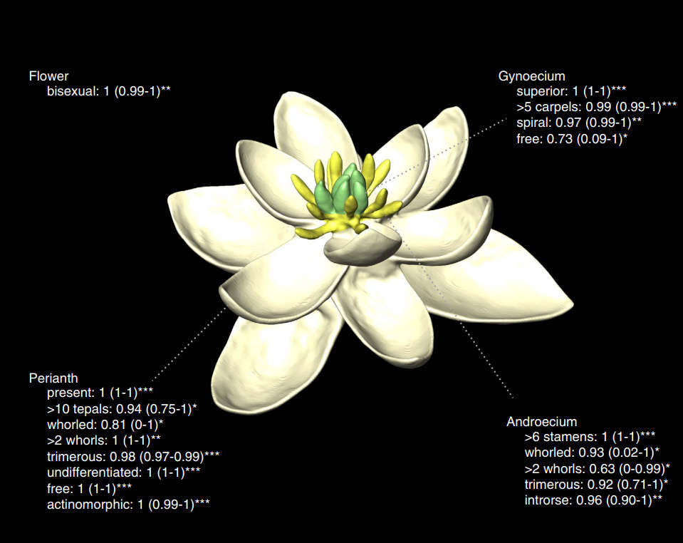 content-1501503951-flower-with-probabili