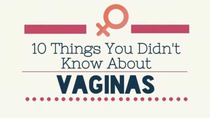 10 Things I Know About You: 10 Things You Didn't Know About Vaginas