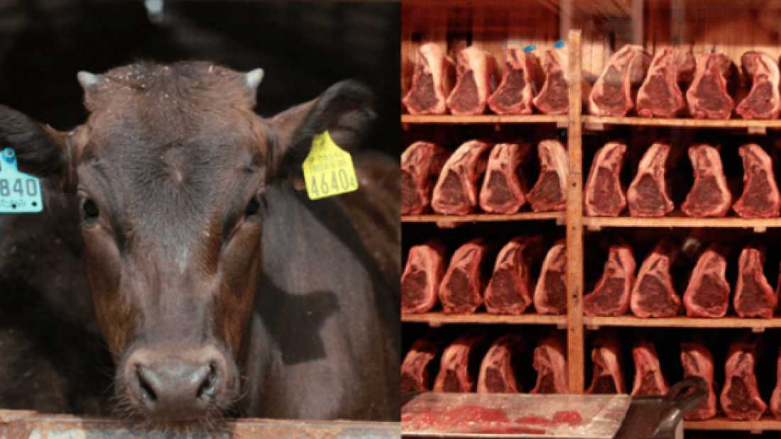 112 Should We Eat Red Meat? The Nutrition And The Ethics