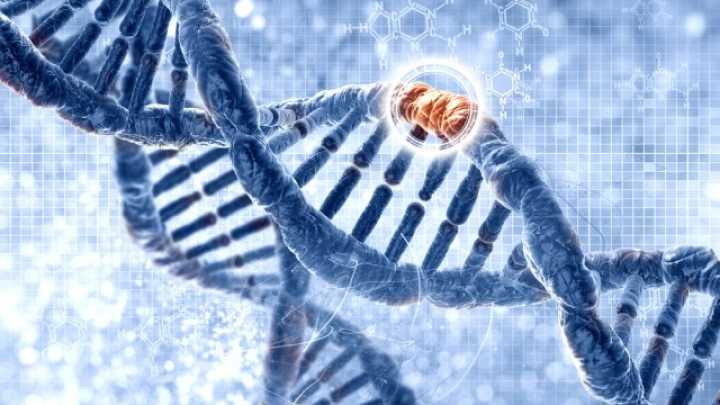 dna techniques may be used to correct a point mutation essay Dna techniques may be used to correct a point mutation dna techniques may be used to correct a point mutation essay sample the whole doc is available only for registered users open doc pages:  dna techniques may be used to correct a point mutation essay sample.