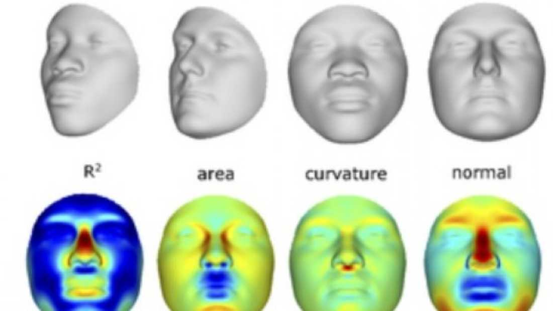 501 Forensic Scientists Build Crude 3D Mugshots From DNA