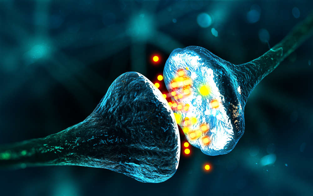 a new type of phantom memory has been found in the human brain