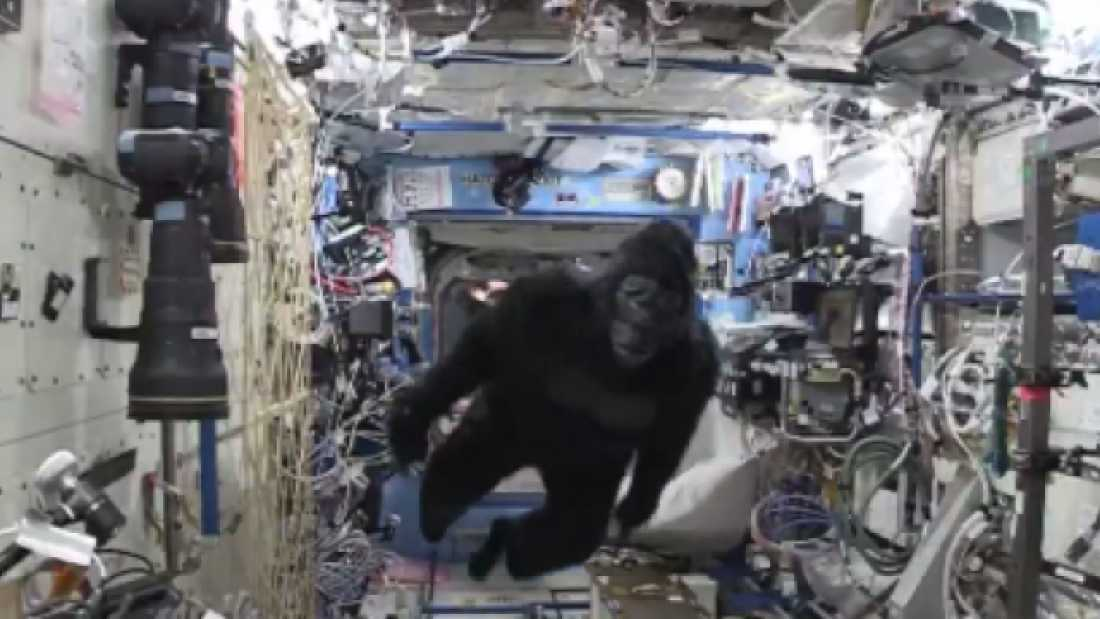 33 Scott Kelly Gets Into Some Ape Suit Hijinks On The ISS