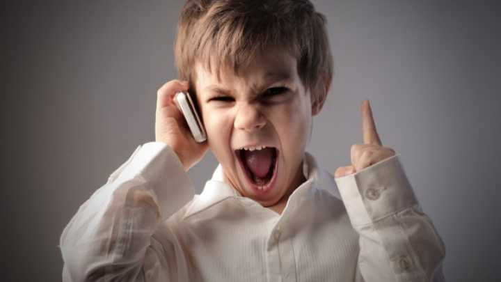 Toddler Tantrums Might Be Influenced By Their Gut Bacteria ...