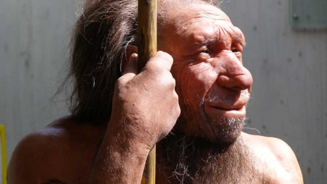 810 Neanderthals May Not Have Been as Inferior as Suggested
