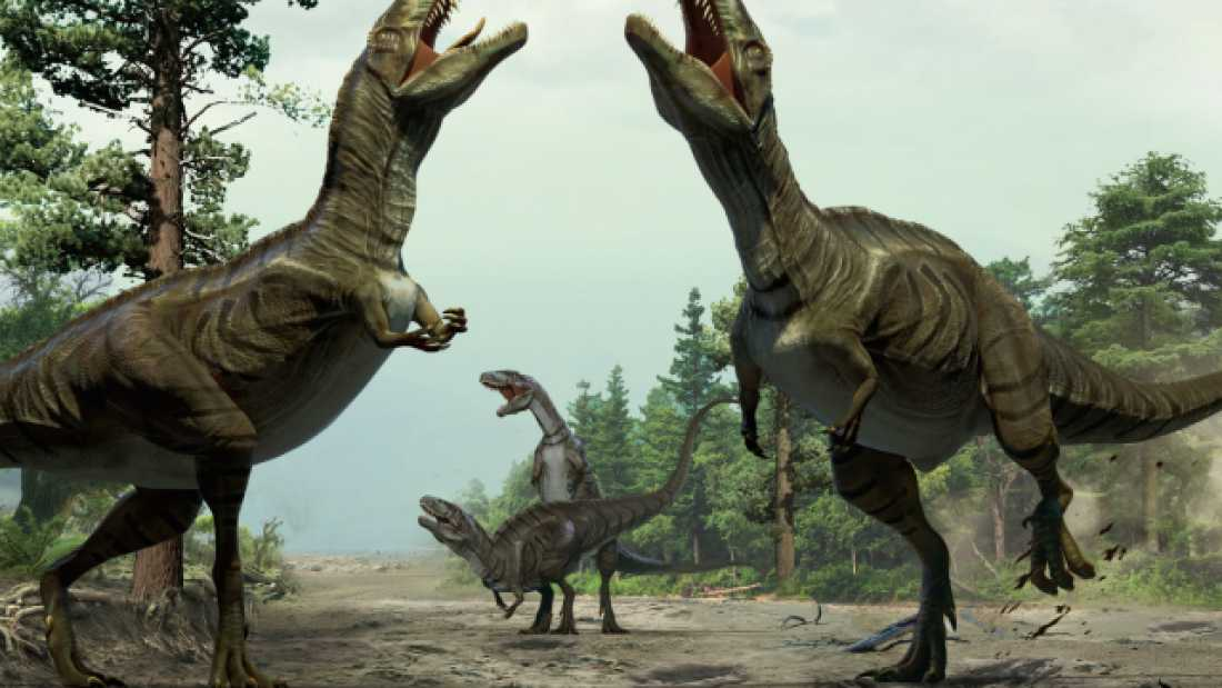 480 Meat-Eating Dinosaurs Had Dancing Competitions Over Mates