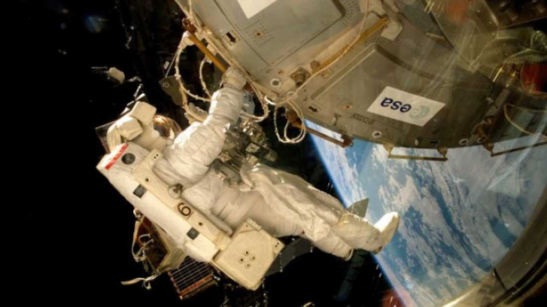 1003 Fungi and Lichens Just Survived 18 Months On The Outside Of The ISS - Which Means They Might Be Able To Survive On Mars Too