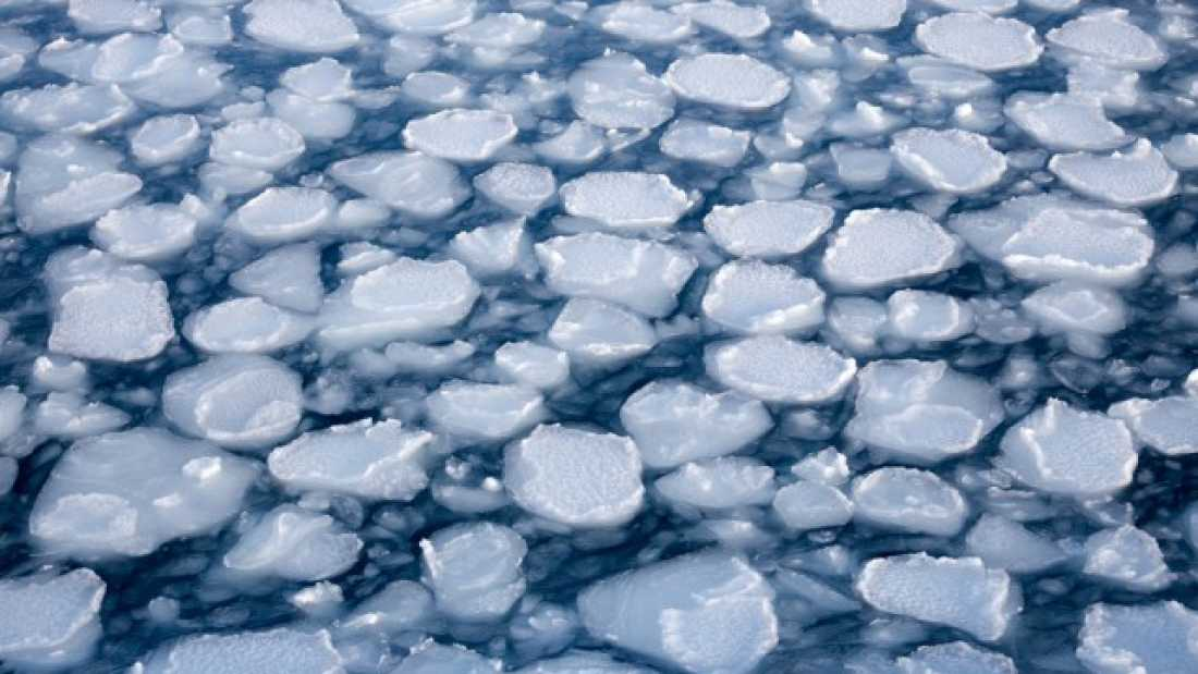 244 Arctic Sea Ice Sets New Record Low For This Time Of Year