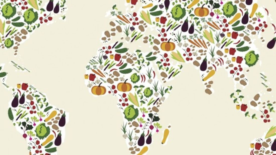 562 Going Veggie Would Cut Global Food Emissions By Two Thirds And Save Millions Of Lives – New Study