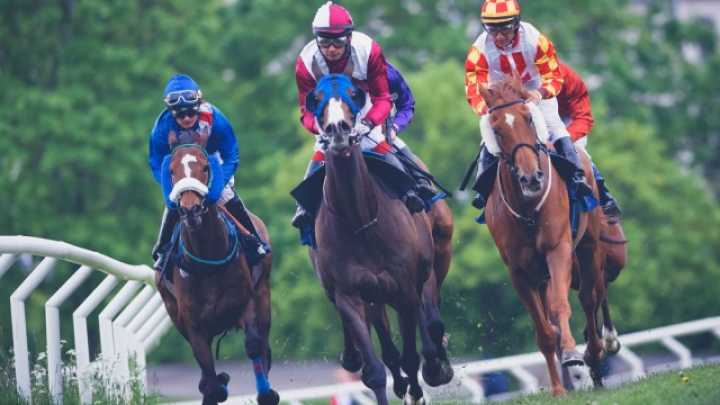 Artificial Intelligence Wins Almost $11,000 On Horse Bets