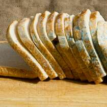 Please Stop Eating The 'Clean' Bit Of Moldy Bread, It's Not Safe