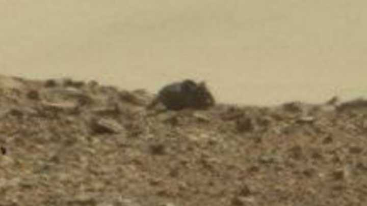 """""""Mouse"""" Spotted On Mars"""