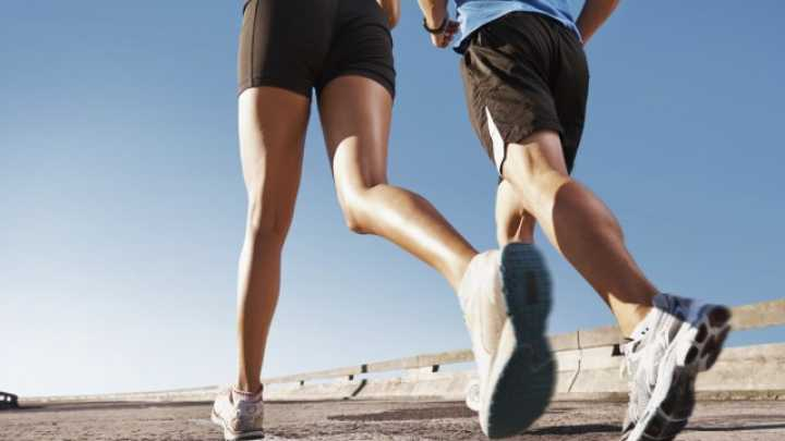 Endurance Training Influences Gene Expression In Muscles