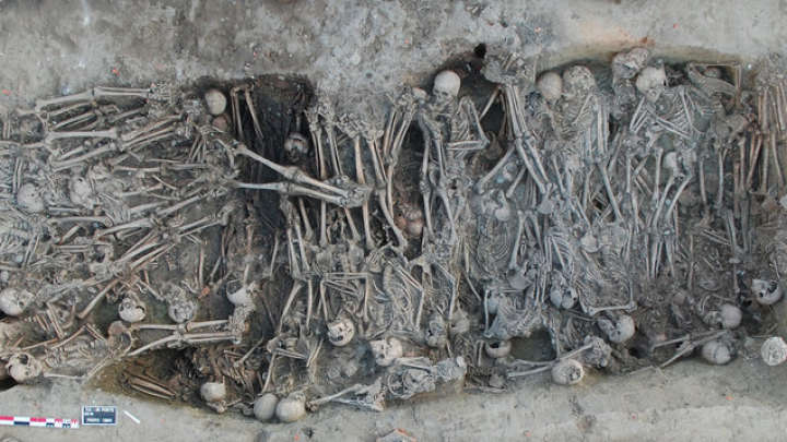 14th-Century Black Death Plague That Killed More Than Half Of Europeans Traced Back To Russia