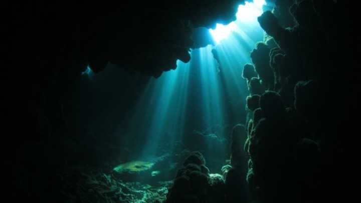 Twilight Zone Ocean >> Mysterious Deep Hum Found Within The Ocean S Twilight Zone