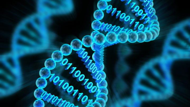 From Living Computers To Nano-Robots: How We're Taking DNA Beyond Genetics