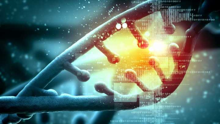 Should We Be Editing Human DNA?