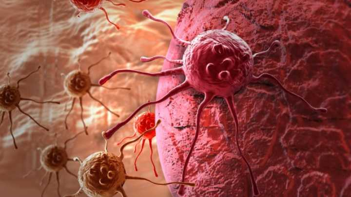 Remarkable Breast Cancer Trial Destroys Tumors In Just 11 Days