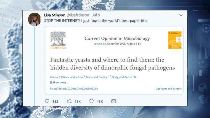 Scientists Are Sharing Their Favorite Paper Titles, And They're