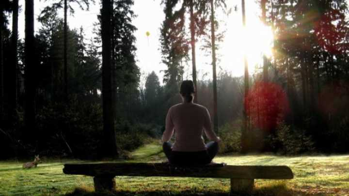 New Study Suggests Meditation Can Actually Alter Your Body On A Cellular Level