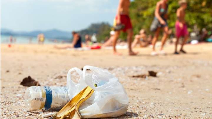 Australia Has Cut Its Plastic Bag Use By 80 Percent In Just 3 Months