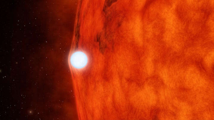 """Astronomers Have Spotted An """"Impossible"""" White Dwarf"""