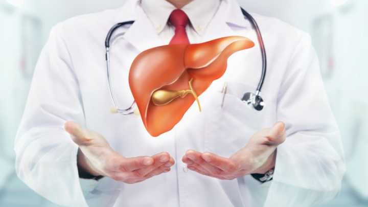 Banned Diet Pill Reverses Type 2 Diabetes And Fatty Liver In Rats