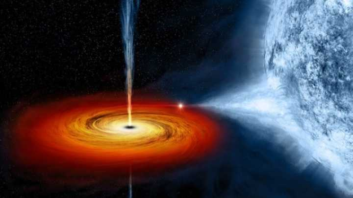black holes may collapse into their exact opposites white holes